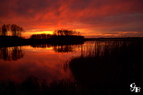 Photo: Sunset on Wild Rice Lake in northern Minnesota. Photo by Chris J. Benson