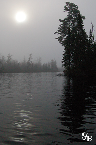 Photo: Sunrise in the fog over a brook trout lake in northern Minnesota. Photo by Chris J. Benson