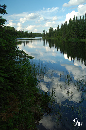 Photo: A trout lake in northern Minnesota. Photo by Chris J. Benson
