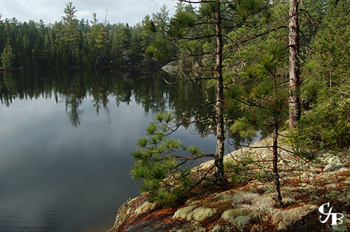 Photo: Brook Trout lake in the BWCA in northern Minnesota. Photo by Chris J. Benson
