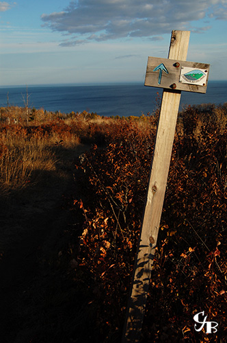 Photo: Superior hiking trail looking towards Lake Superior. Photo by Chris J. Benson